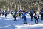 2015 Muskoka Loppet cross-country race