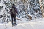 Snowshoe, cross-country trails open for winter in Argyle