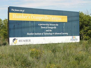 Humber lands