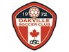 Oakville Soccer Club crowns three boys' house league champions