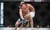 Johnson beats Horiguchi, retains title at UFC 186-Image1