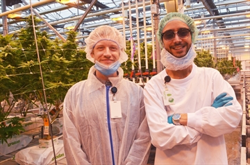 Cannabis program grads entering a dynamic industry:Pelham's CannTrust offers birds-eye-view internships