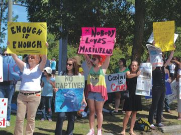 Marine mammal rule changes 'long overdue': former Marineland trainer