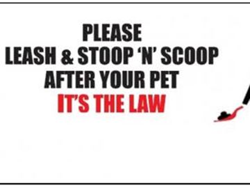 Doggy-doo dilemma has Innisfil councillor calling for stoop-and-scoop campaign