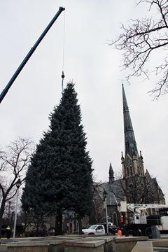 Christmas has come