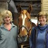 Horses help Windrush clients ride the autism spectrum in Halton