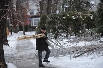 Viktor Adamovsky clears a tree limb for a neighbour in the Kingsway/Kingsgrove area after the ice storm that hit Toronto over the weekend. December 22,2013