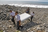 Debris in Mozambique, Mauritius to be analyzed by MH370 team-Image1