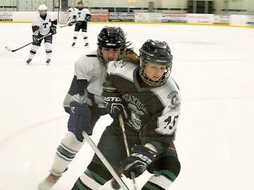 St. Theresa's High School wins Midland girls hockey tournament