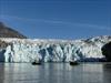 Glacier Viewing in Greenland