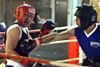 Boxers come out swinging at Warrior's