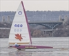 VIDEO: Ice racers on Hamilton Harbour