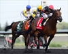 Shaman Ghost wins Queen's Plate race-Image1