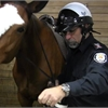On the job with a mounted police officer