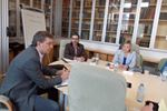 Councillor working group