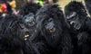 Rwanda names 24 baby mountain gorillas in annual tradition-Image1