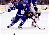 Leafs keep rolling with record-setting night-Image1