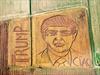 Artist mows giant Trump portrait in Italian cornfield-Image1