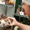 The life of a Nutty Chocolatier in Scugog
