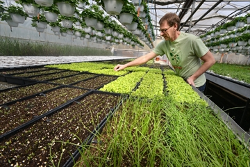Gardens Focusing On Victory Over Hunger
