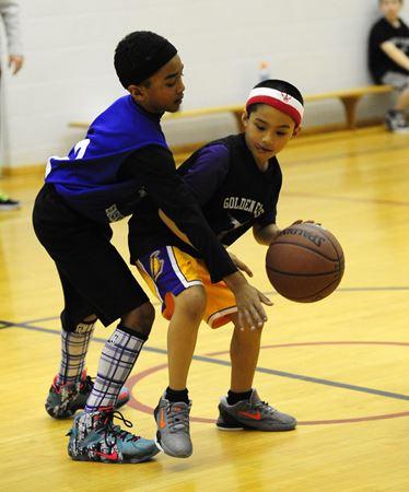 South Toronto Golden Eagles Basketball Club
