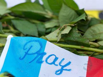 topic Paris attacks