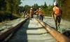 LRT project