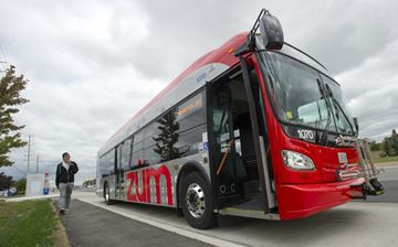 Brampton Zum bus