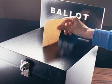 Niagara votes