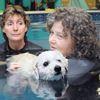 Miracle dog swimming