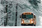Buses cancelled