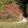 Fall has arrived in Durham Region