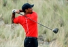 More time needed before Tiger Woods is judged by his scores-Image1
