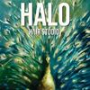 Halo Hair Studio