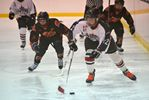 Collingwood Silver Stick Finals set for Sunday