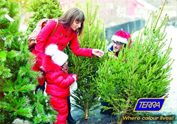 Christmas Tree Decorating 101 with TERRA