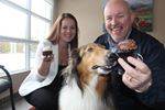 Wasaga town hall hosts National Cupcake Day event for humane society
