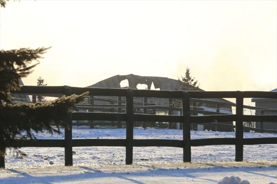 Horseracing community devastated after 'multimillion ...