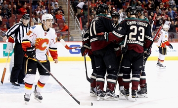 Ekman-Larsson's OT goal lifts Coyotes to 2-1 win over Flames-Image1