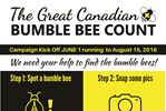 Innisfil residents can help Great Canadian Bumble Bee Count