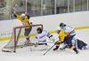 2015 Halton high school hockey finals