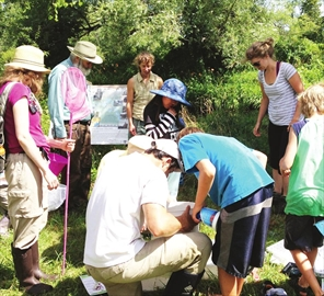 Wild food club prepares for traditional medicine, healing walk July 26– Image 1