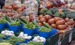 Health Canada looks to revise food guide-Image1