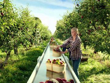 Foodland Ontario ad