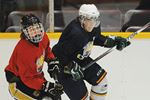 Barrie Colts back in action