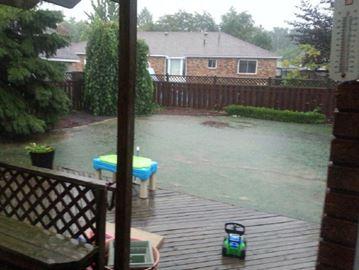 Turkington backyard