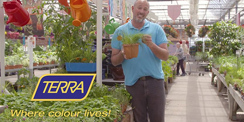 Growing herbs indoors with terra greenhouses - Herbs that can be grown indoors ...