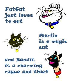 Tom's Amazing Cats