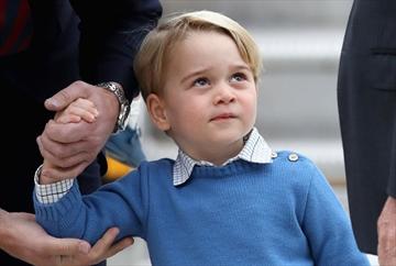 Wary George