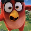 New Movies: 'Angry Birds' hits the big screen